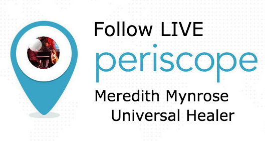 periscope-logo-meredithmynrose